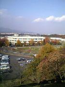 神奈川大学 泉水ゼミ
