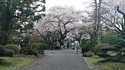 日本大学商経学科H21〜H23