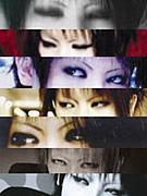 須賀さんの目に恋をした。