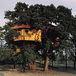 ツリーハウスをつくろうin福岡県