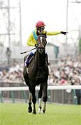 MFJ(my favorite jockey)POG