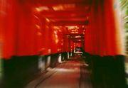 京都♪大好き♪楽しもう