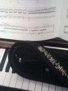 武道とピアノを志す人