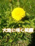 〜☆詩(うた)日記★〜