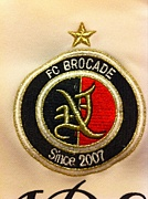 FC-Brocade