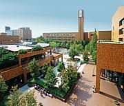 2013年度 大阪学院大学 新入生