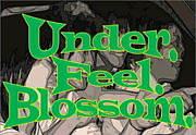 Under.Feel.Blossom.