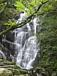 SSC滝の会