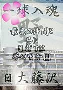 第56期日大藤沢硬式野球部