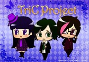 TriC Project