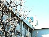 """成田国際 """"普通科"""" 96年卒"""