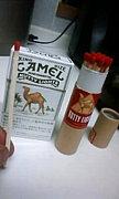 CAMEL NUTTY LIGHT
