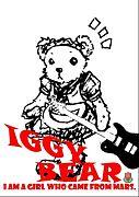 IGGY BEAR