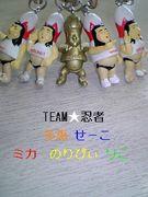 TEAM★忍者