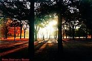 代々木公園でジョギング!