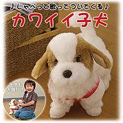 日本直販 愛犬てつ