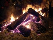 焚き火をしながら酒を飲む