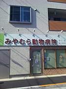 江戸川区みやむら動物病院