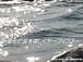 〜変化の波を楽しくサーフィン〜