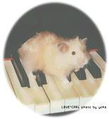 ピアノと戯れるの会♪