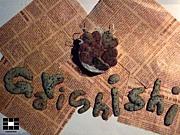 GaRiShiShi