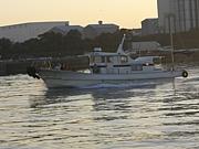 菊川 渡船