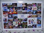 デイ☆ドナのゆかいな写真たち
