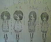 L A D Y B U G *゜