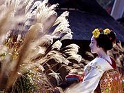 京都変身舞妓体験