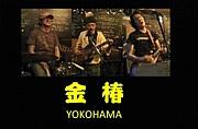 横浜 「金椿(Kintsuba)」