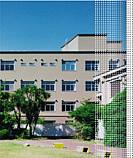 千葉大学看護学部