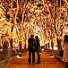 SENDAI光のページェント-仙台