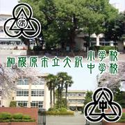 相模原市立大沢小学校・中学校