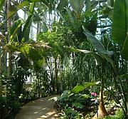 岩手のゲーセン「熱帯」