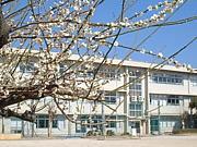 松戸市立 馬橋小学校