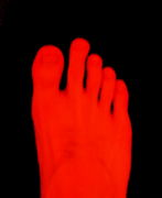 足の人差し指が親指より長い?