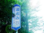 ルート413(道志みち)