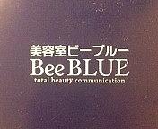 Bee BLUE フェリス