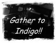 インディゴに集合!