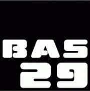 BAS29