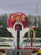 JRA10競馬場