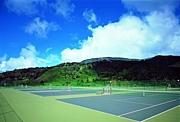 【埼玉】鴻巣・熊谷周辺でテニス