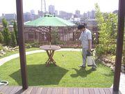 小さいお庭