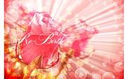 Re:Birth〜リバース〜