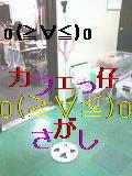☆カフェっ仔o(≧∀≦)oさがし☆