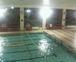札幌 水泳好きな人