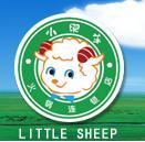 シンセン小肥羊推進委員会