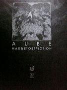 Aube/中嶋昭文/ノイズ