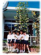 岡山あけぼの幼稚園