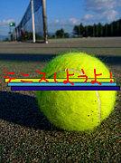 テニス サークル MIXI 鹿屋